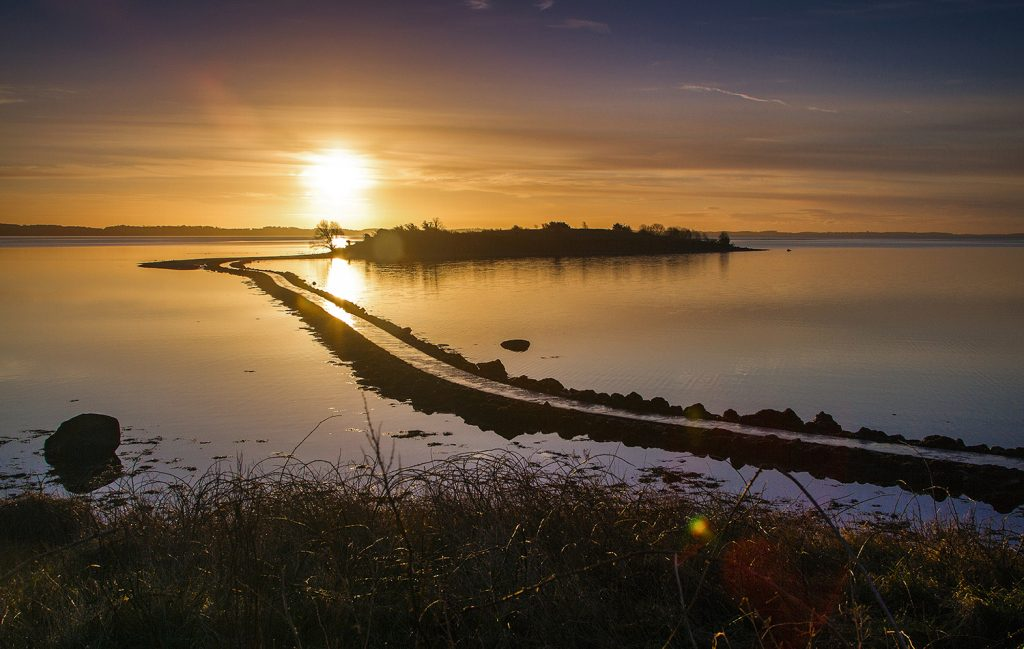 Credit: D Casement. Sunrise at Islandhill, Comber.