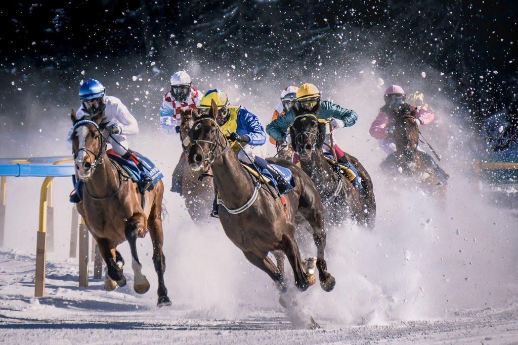 Credit: Pietro Mattia Horse racing