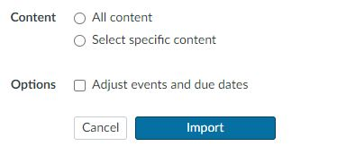 Canvas - copy content options